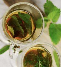 Tee inhalieren im TEEDARIUM®